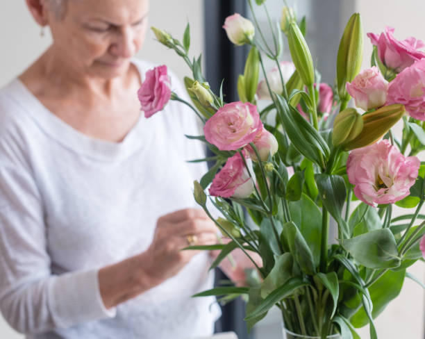 Woman arranging pink flowers in vase stock photo