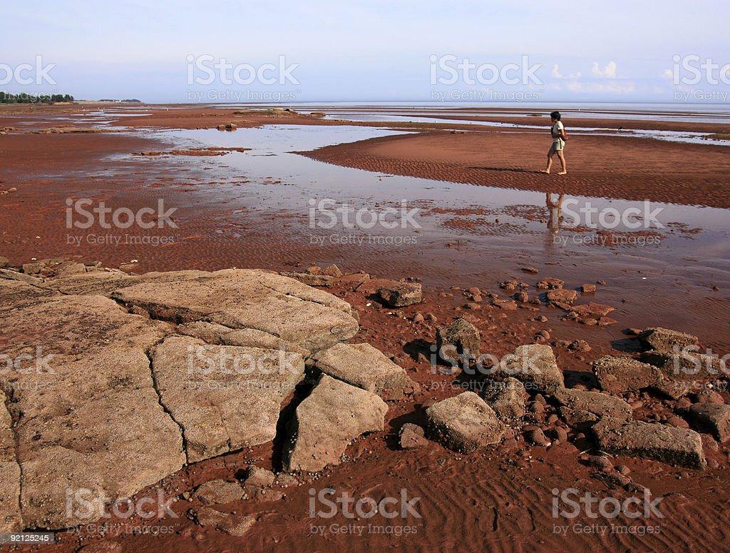 Woman at Argyle Shore stock photo