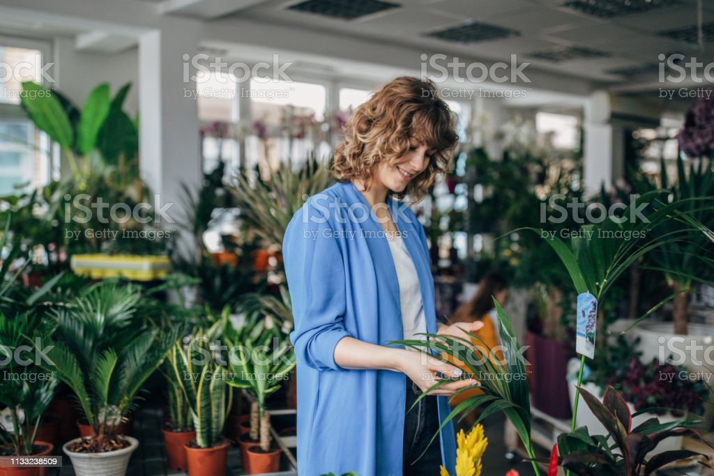 Young woman is buying plant at the flower shop.