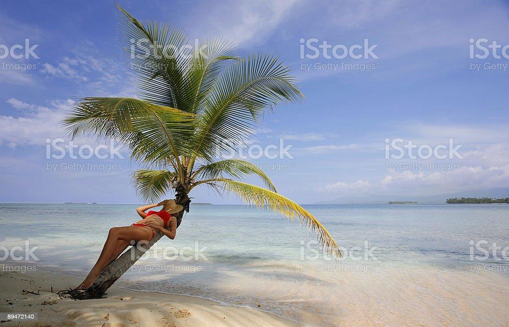 Woman at the Seashore royalty-free stock photo