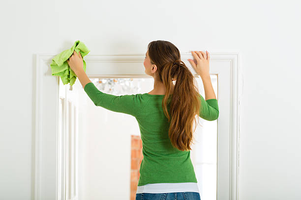Woman at the spring cleaning stock photo