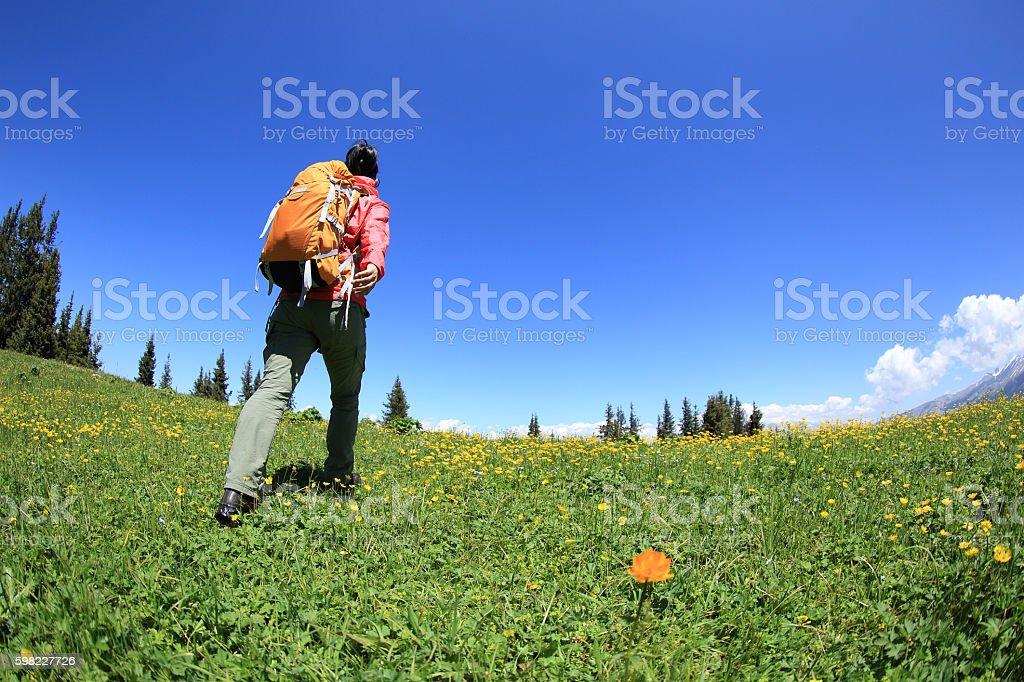woman backpacker hiking on grassland lead to mountain peak foto royalty-free