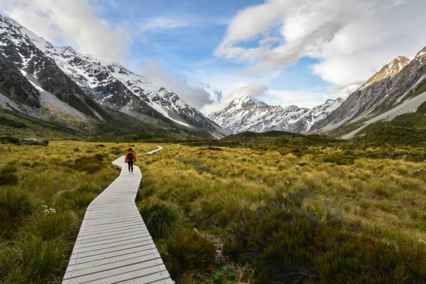 frau backpacker zu fuß auf dem hölzernen weg zum mt. cook in neuseeland - neue abenteuer stock-fotos und bilder