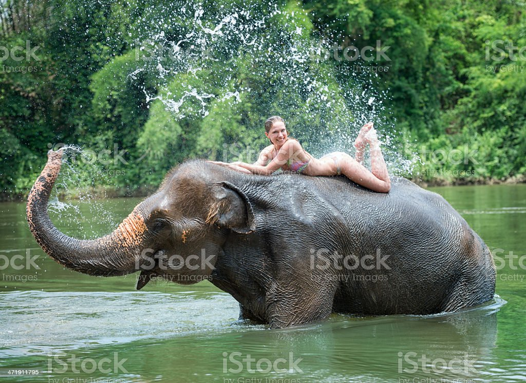 Woman Bathing With An Elephant Stock Photo - Download -4051