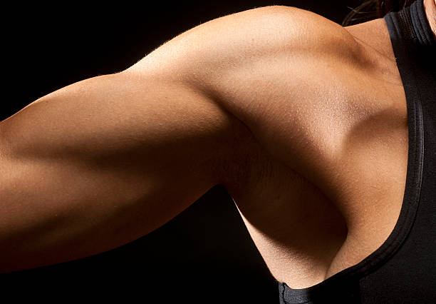 Woman biceps muscle stock photo