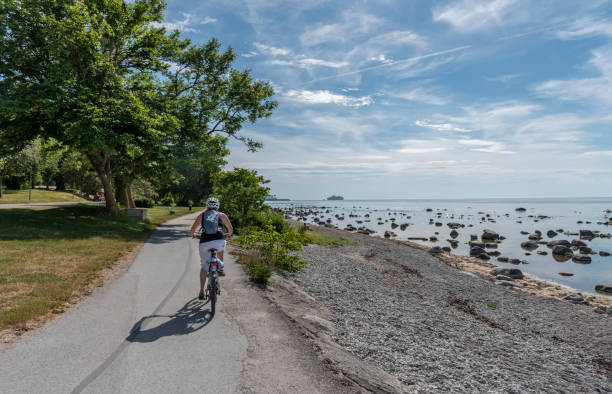 Woman bicycling in summer stock photo