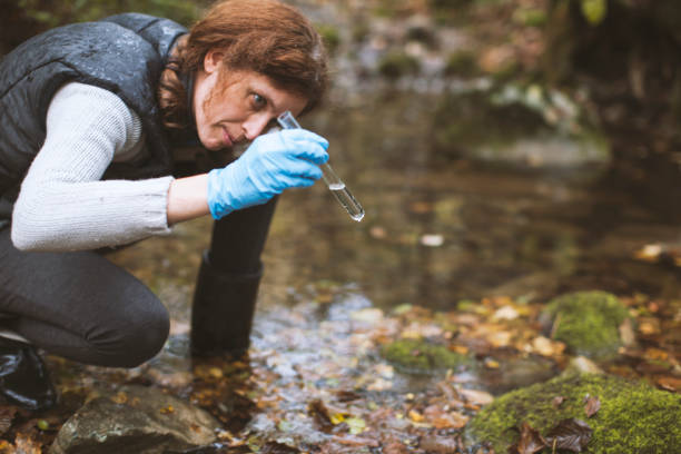 woman biological researcher looking at water sample - ambientalista foto e immagini stock