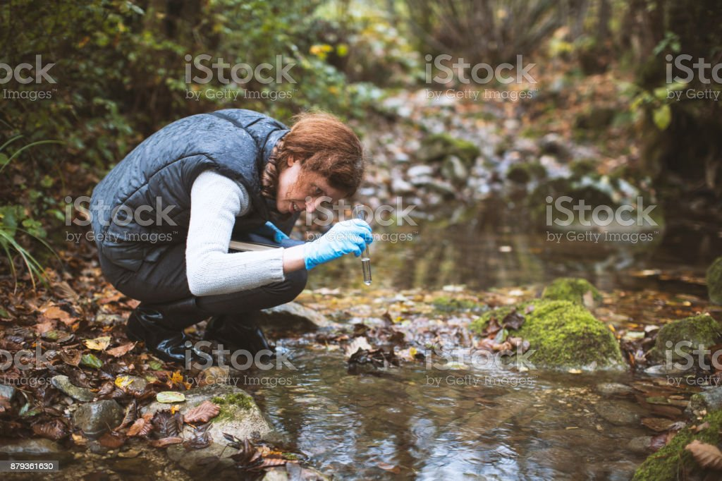 Woman Biological Researcher Taking a Water Sample stock photo