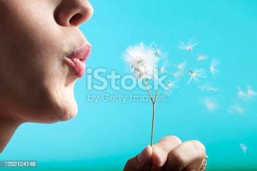 Young woman blowing dandelion flower.