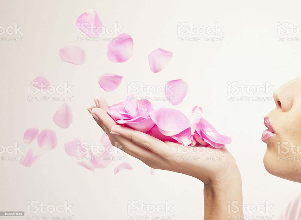 Woman blowing pink rose petals stock photo