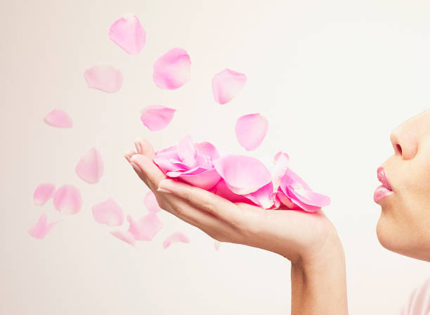 woman blowing pink rose petals - rose petals stock pictures, royalty-free photos & images