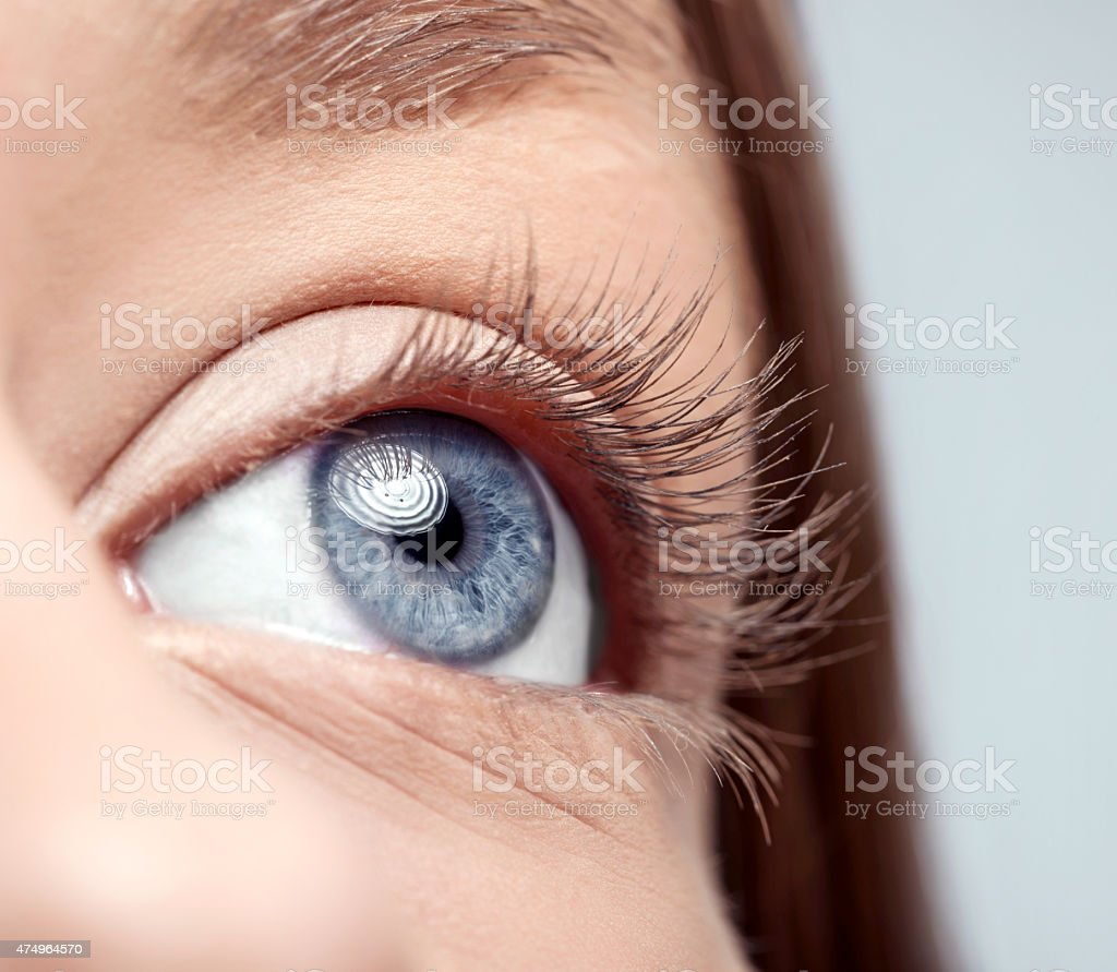 woman blue eye macro stock photo