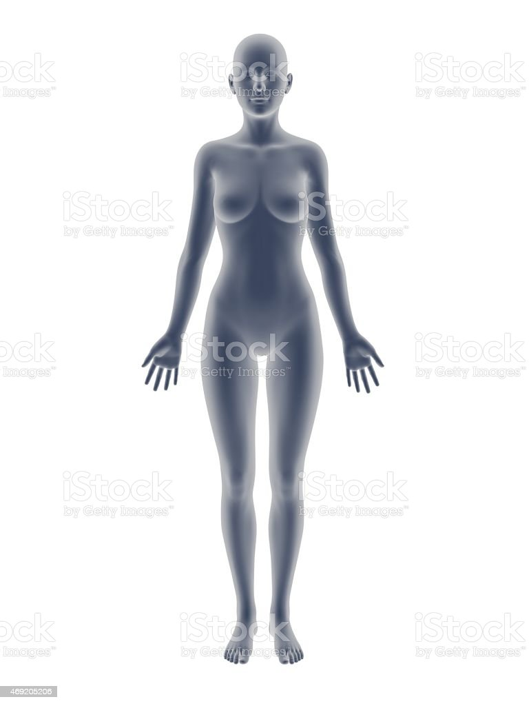 woman body stock photo
