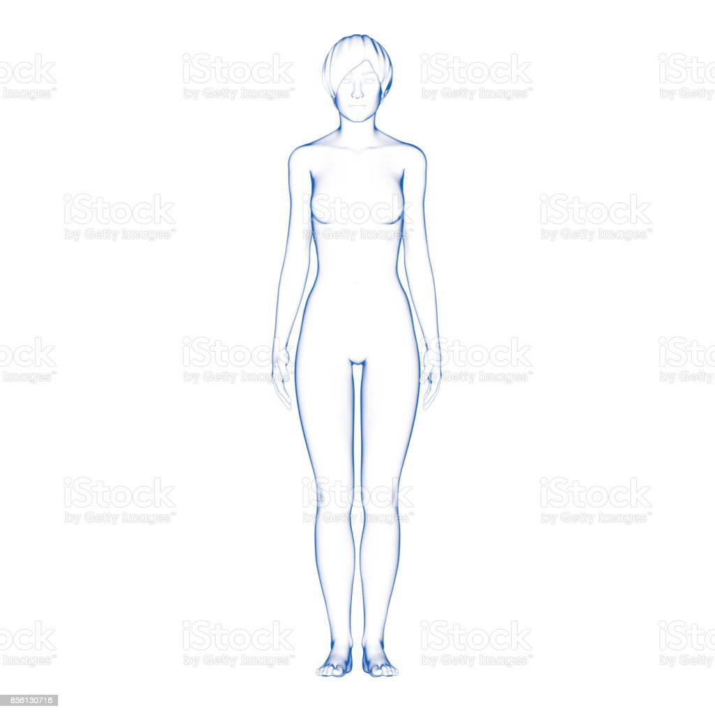Woman Body Shape stock photo