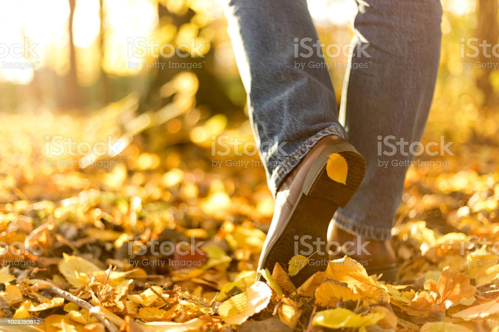 Woman boots in fallen autumn leaves. Step to step concept