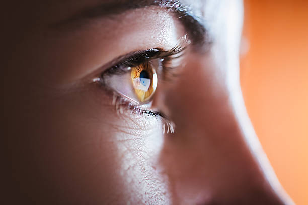 Frau Braun Auge – Foto