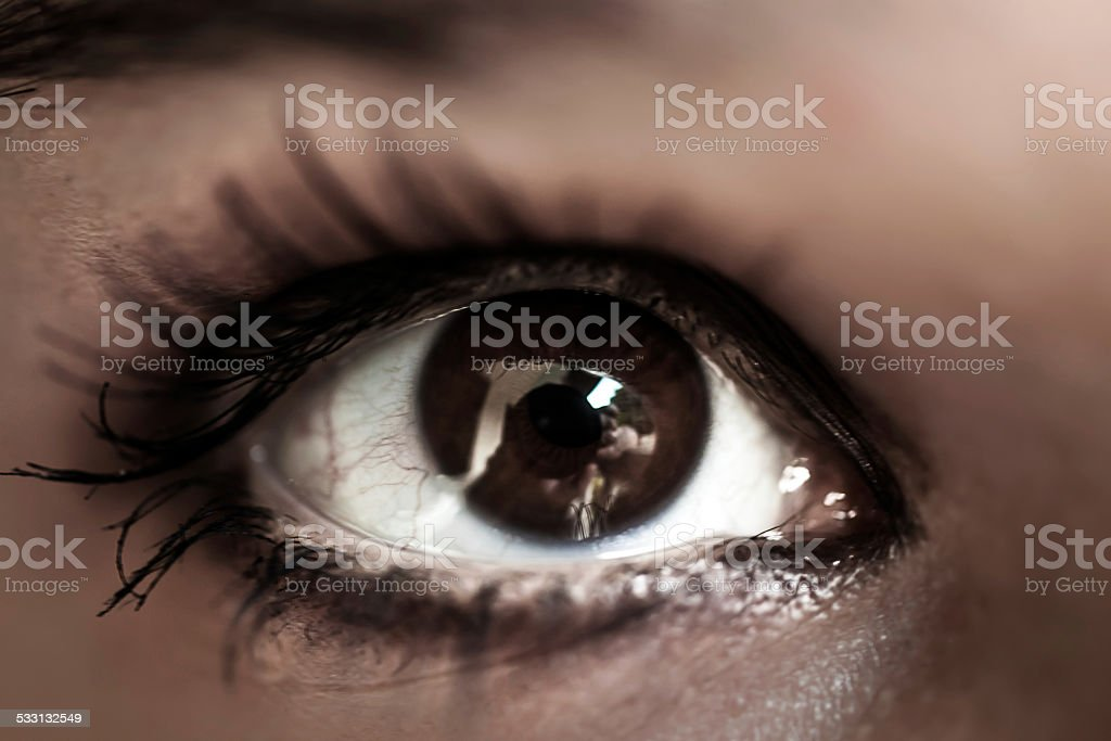 Woman brown eye with pastel color makeup and long eyelashes. stock photo
