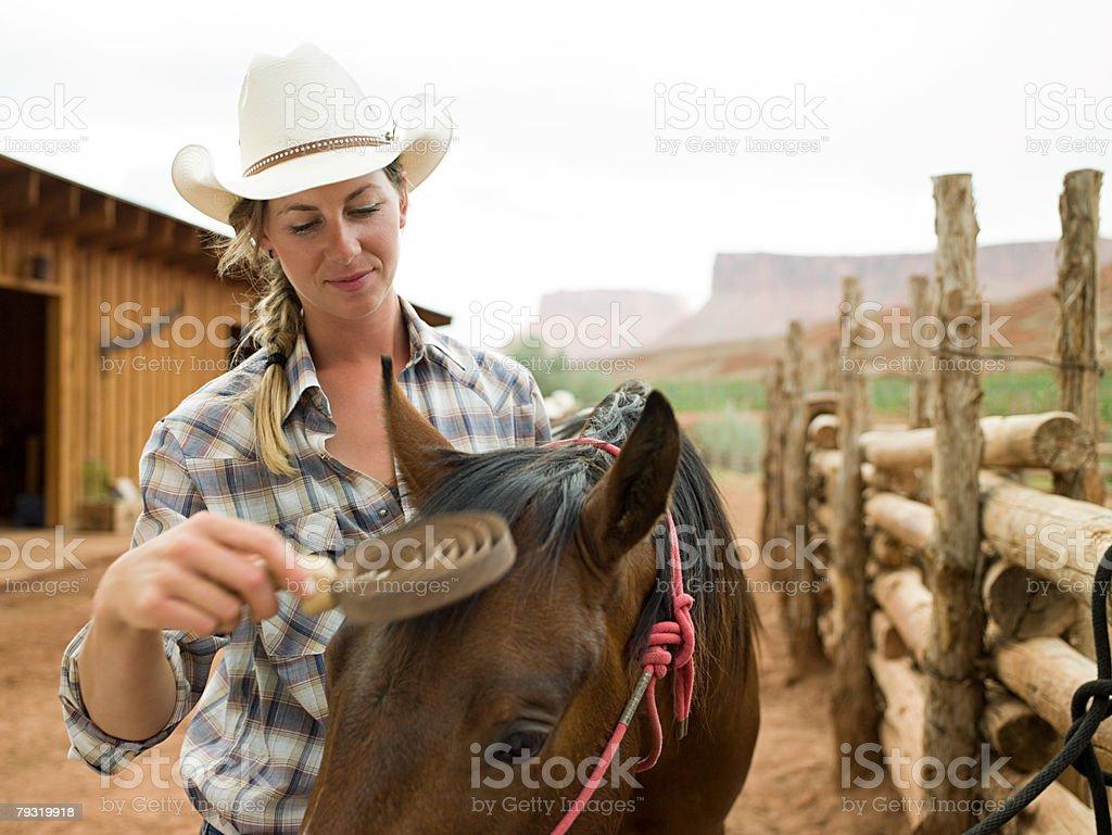 Woman brushing horse stock photo
