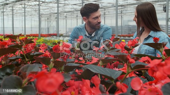 istock Woman Buying Flowers in a Sunlit Garden Shop. 4K. Young woman shopping for decorative plants on a sunny floristic greenhouse market. Home and Garden concept. 1164898042