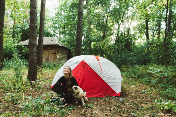 Woman camping with dog in pine forest picture id1204816691?b=1&k=6&m=1204816691&s=612x612&w=0&h= okltdznzeohgcg4i5yxddija17a8crsri4otn3gru8=