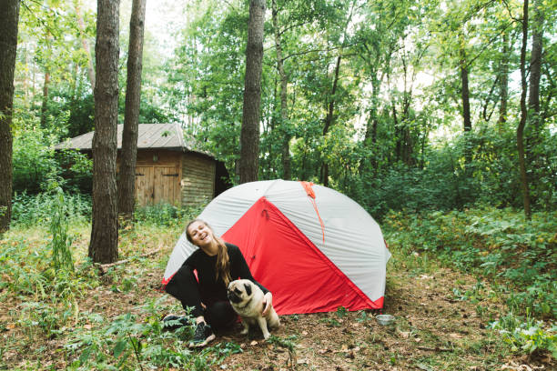 Woman camping with dog in pine forest picture id1204816807?b=1&k=6&m=1204816807&s=612x612&w=0&h=e6jr8r9fhw5pcy5vclxi269osaaypwib58vt0whlknw=