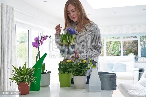 Woman Caring For Houseplants Smelling Blooms