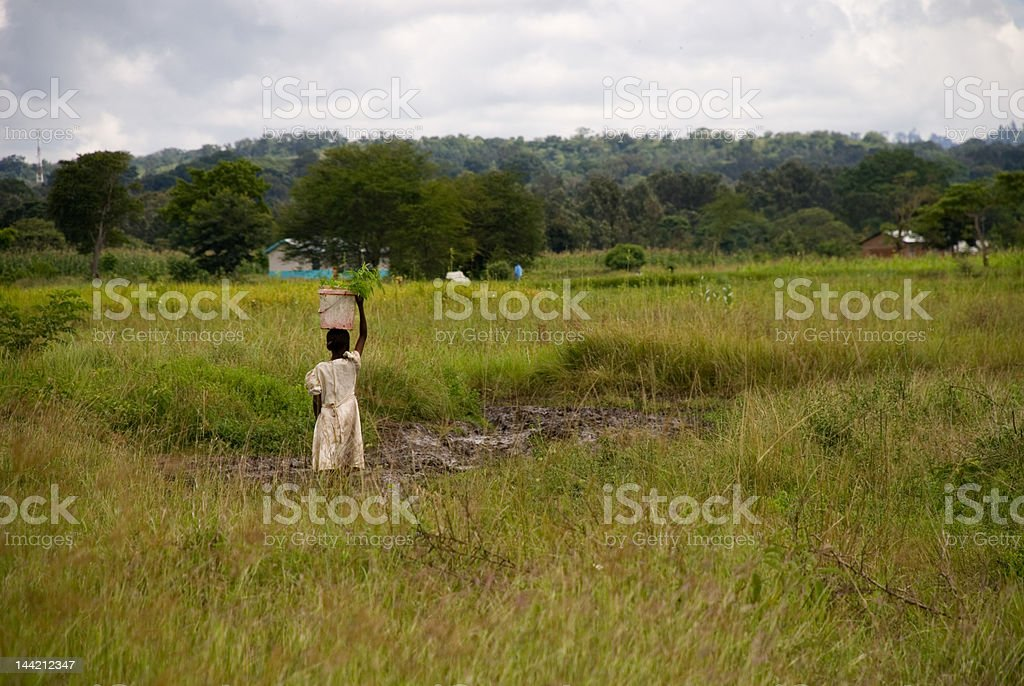 Woman Carrying Basket on Head stock photo