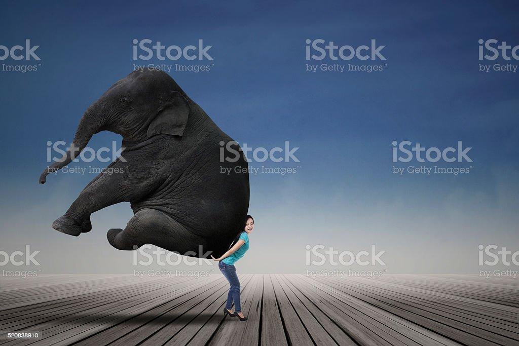 Frau tragen groß Elefant – Foto
