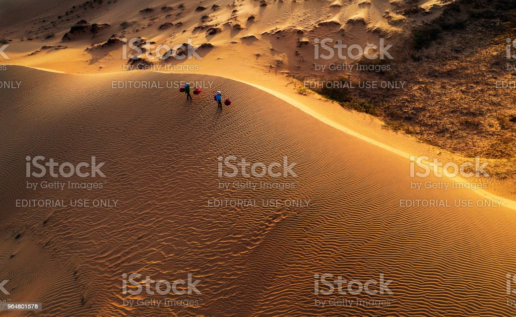 Woman carrying flower basket at sunset in Mui Ne sand dune, Vietnam royalty-free stock photo
