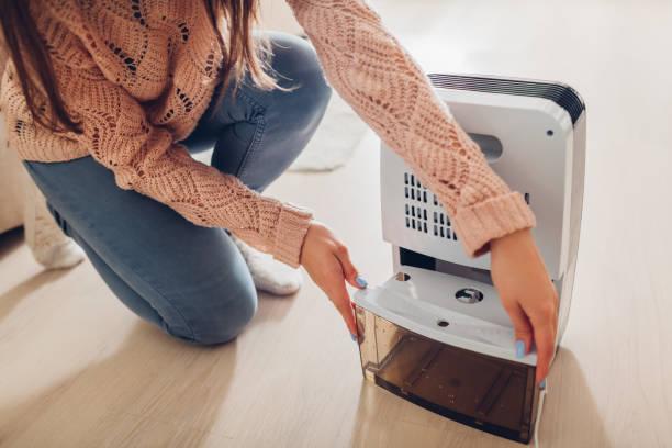 女性は自宅の除湿器の水コンテナーを変更します。アパートの湿気。モダンな空気乾燥機 - 加湿器 ストックフォトと画像
