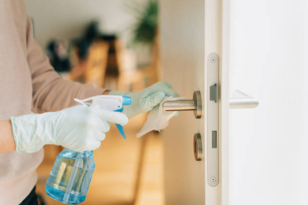 Woman cleaning a door handle with a disinfection spray and disposable wipe Woman in disposable gloves cleaning a door handle with a disinfection spray pathogen stock pictures, royalty-free photos & images