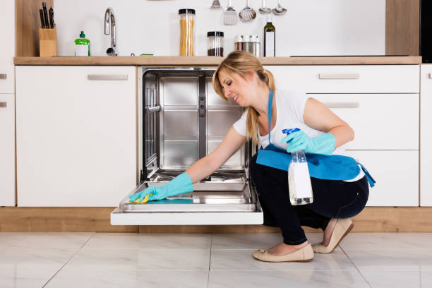 Woman Cleaning Dishwasher In Kitchen Young Woman Cleaning Dishwasher With Rag And Spray Bottle In Kitchen dishwasher stock pictures, royalty-free photos & images