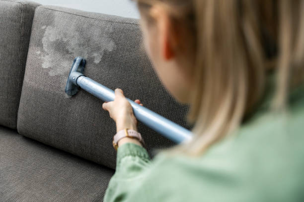 woman cleaning fabric sofa with a steam cleaner at home stock photo