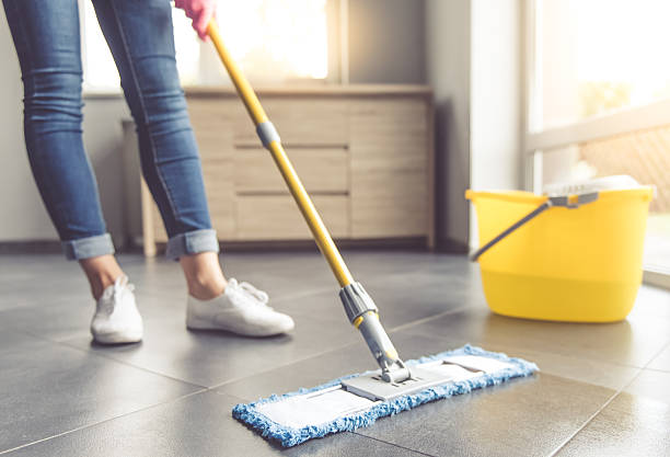 Woman cleaning her house stock photo