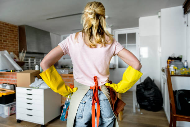 woman cleaning the house - clean stock pictures, royalty-free photos & images