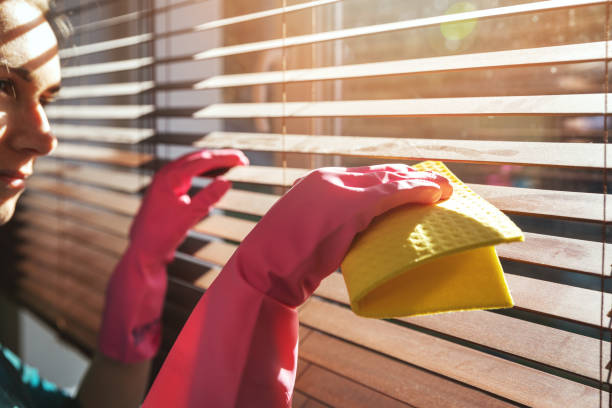 woman cleaning wooden window blinds from dust at home on sunny day stock photo