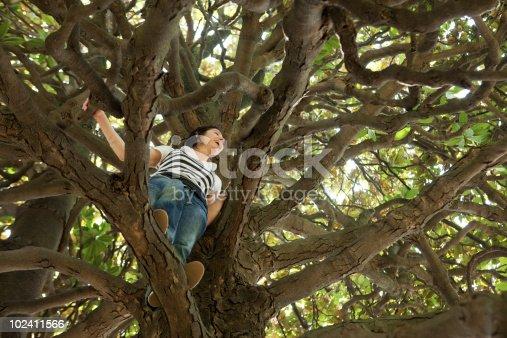 istock Woman climbing Magnolia tree 102411566