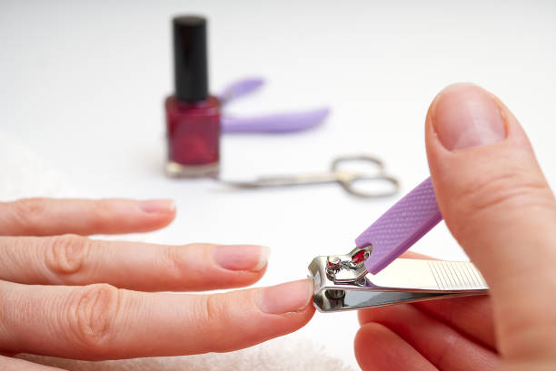 Woman Clipping Nail s with Forceps. Female cuts his nails on a white background with tweezers for nails. manicure procedures yourself at home Woman Clipping Nail s with Forceps. Female cuts his nails on a white background with tweezers for nails. manicure procedures yourself at home. pedicure manicure men beauty spa stock pictures, royalty-free photos & images