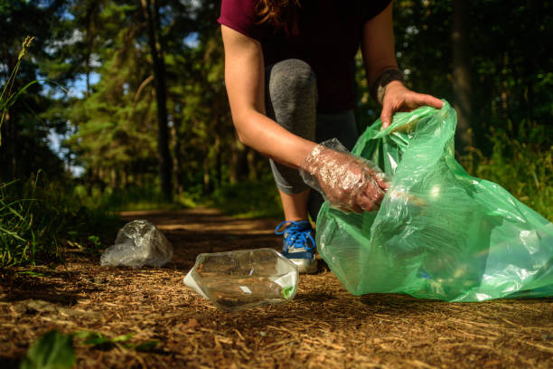 Woman collecting garbage in forest
