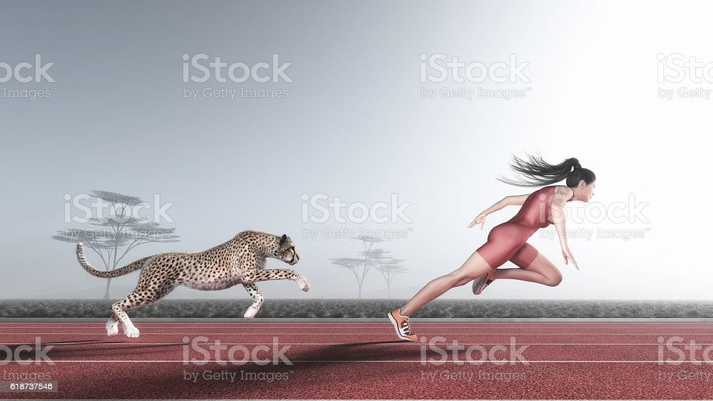 Woman competes with a cheetah - foto de stock