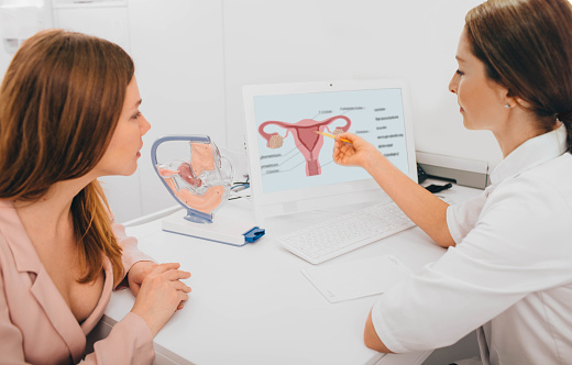 A doctor pointing to a digram of the female reproductive system. Another person is looking at the diagram.
