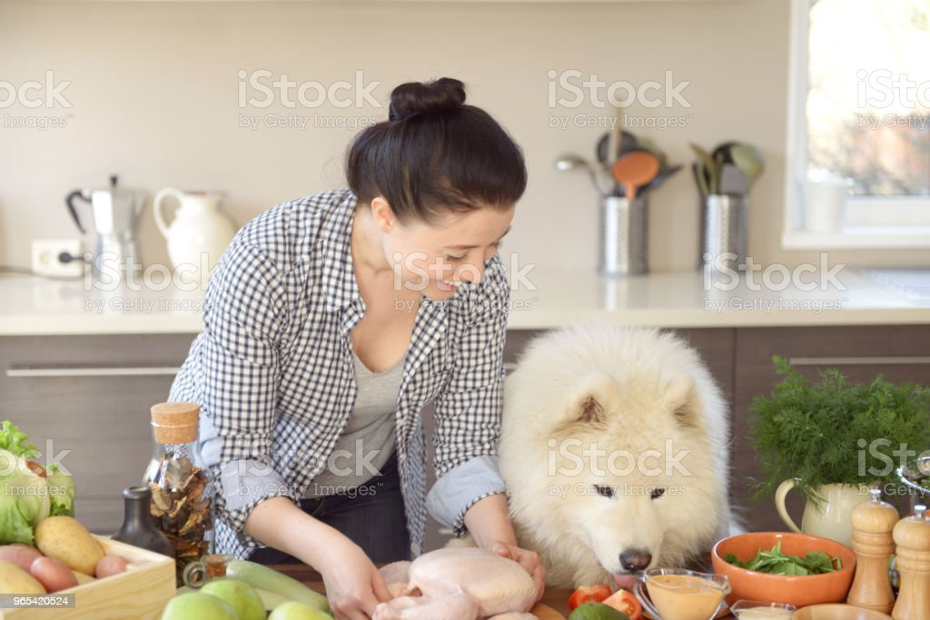 woman cooking in the kitchen ( with dog) royalty-free stock photo