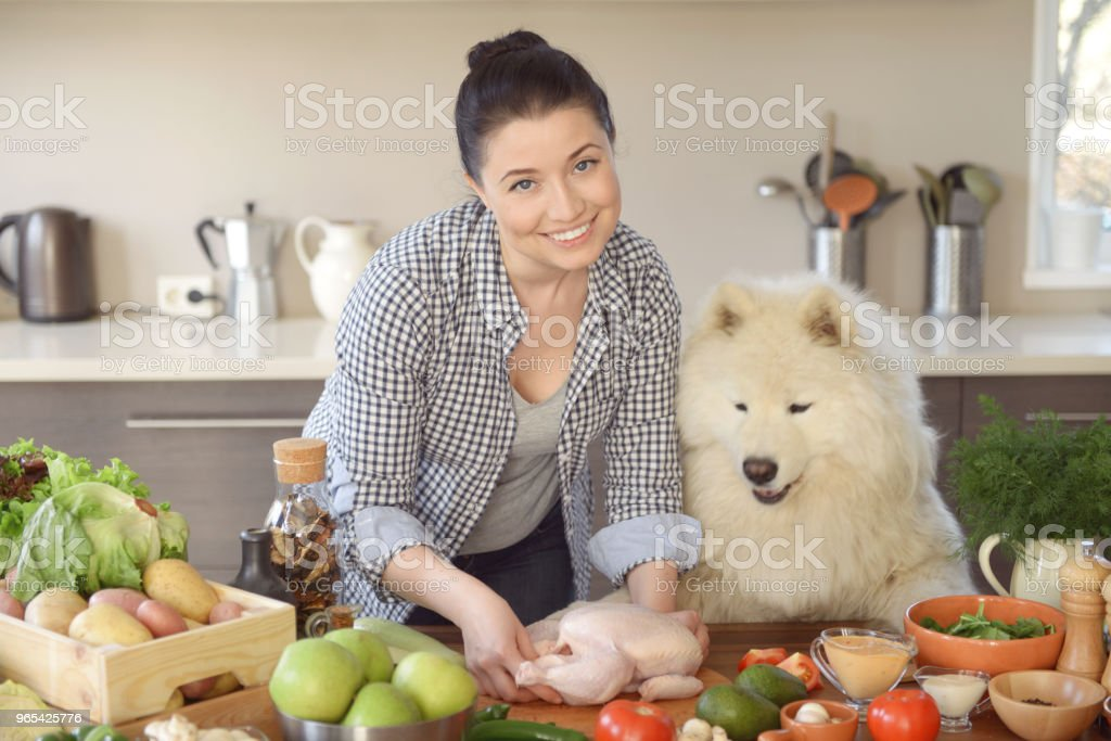 woman cooking in the kitchen ( with dog) zbiór zdjęć royalty-free