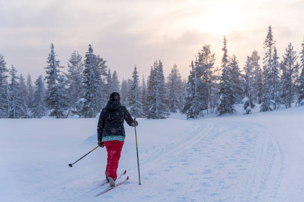 Woman cross country skiing in Lapland Finland stock photo
