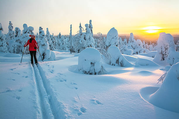 woman cross country skiing - finland stock pictures, royalty-free photos & images