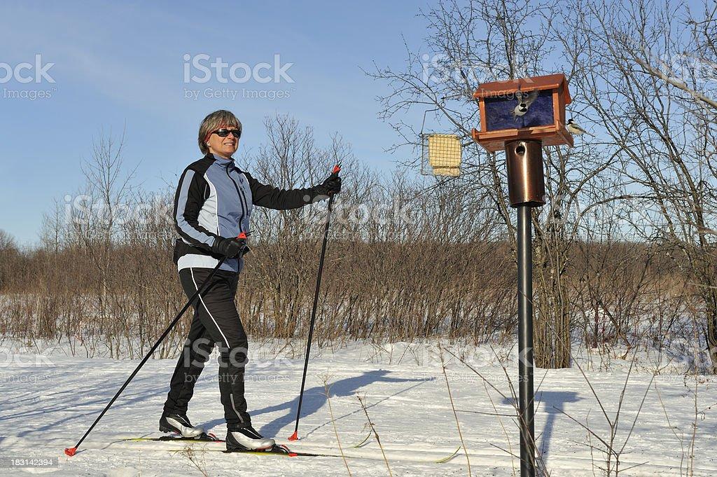 Woman, cross-country skiing, winter sport, birds stock photo