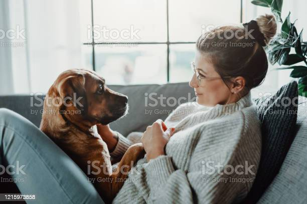 Woman cuddles plays with her dog at home picture id1215973858?b=1&k=6&m=1215973858&s=612x612&h=f 4ztfj7gx56vrt1v1g7do cwe4x3wffe1zury21b34=