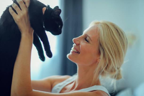 Woman cuddling with cat in the bed picture id810259306?b=1&k=6&m=810259306&s=612x612&w=0&h=cu86kmzotuzbaurpb55gx2qt7xw9rohncvzcsalp2dg=