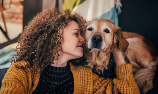 Woman cuddling with her dog Woman playing with her dog at home. retriever stock pictures, royalty-free photos & images
