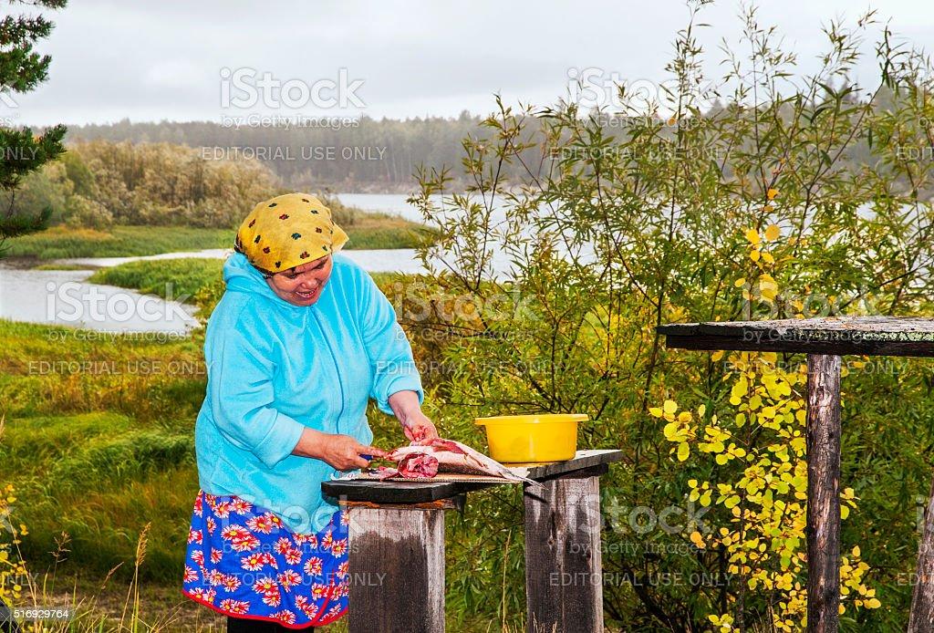 Woman cut up fish. stock photo